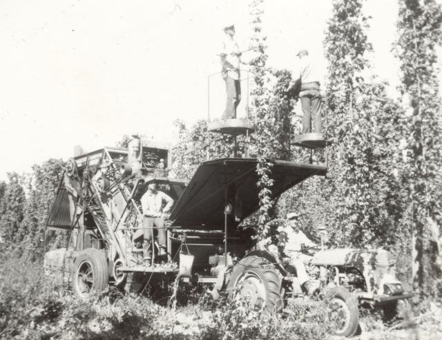 The troublesome hop-picking machine